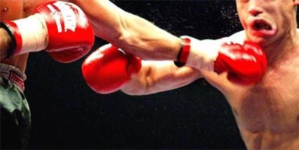 vechtsportgala_425